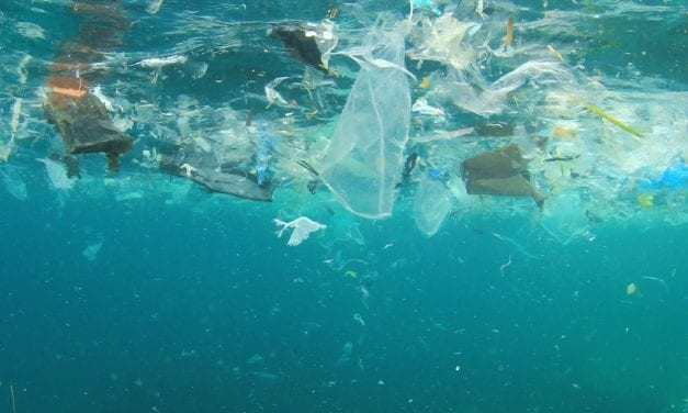 180 countries reached deal to reduce the amount of plastic in world's oceans