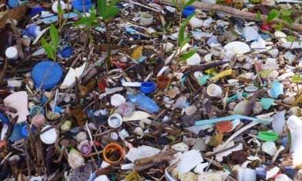 Plastic chokes Durban's coastline – SA ranks among worst polluters
