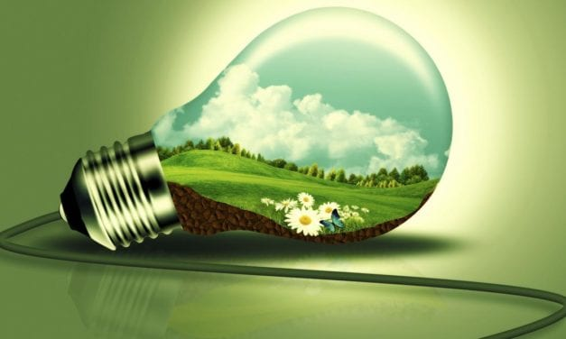 South Africa needs to transition to renewable energy sources and support green energy