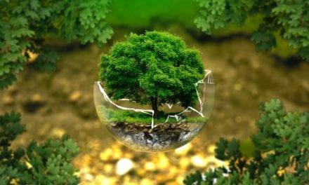 Gauteng environmental management standard adopted