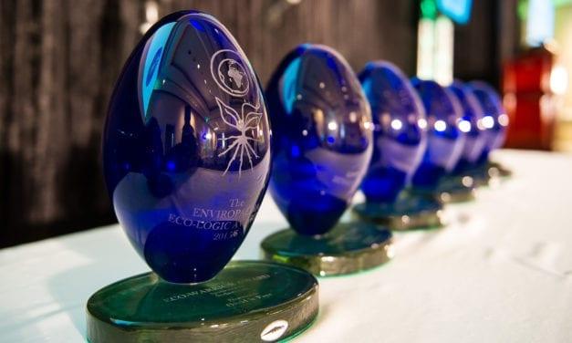 Time for SA eco-champions to shine