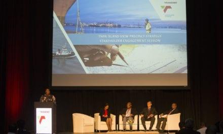 Transnet seeking new terminal operators for Port of Durban's island view precinct
