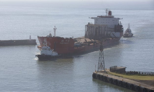 Port of East London sails into the record books