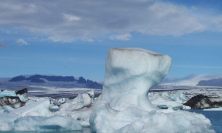 Could icebergs be a solution to the Cape's water crisis?