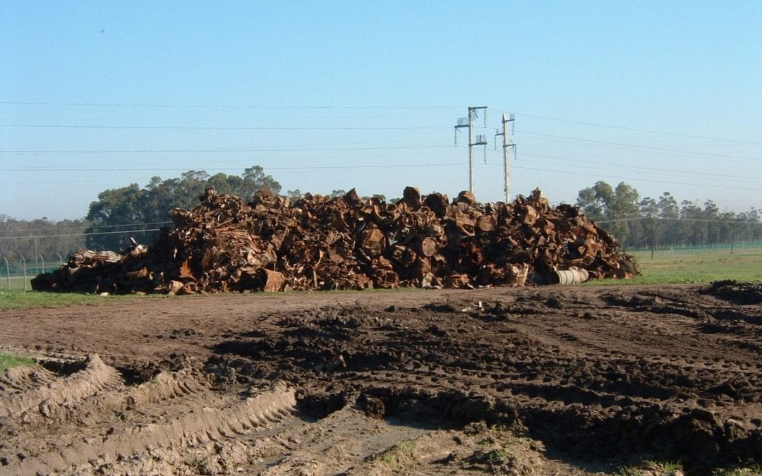 Planning and managing landfills for sustainability