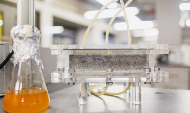 South Africa makes world's first bio-brick from human urine