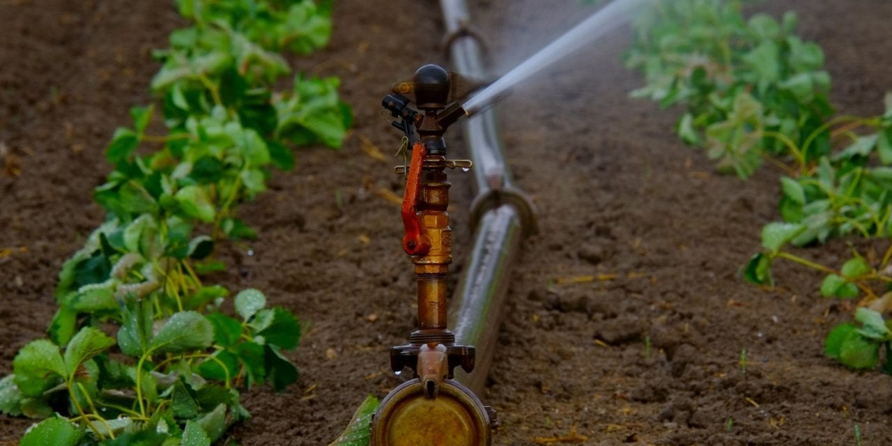 No more delays for water use licences