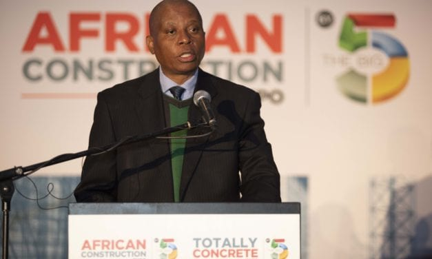Joburg Mayor vows to act against officials who gave the nod to demolish Alex houses