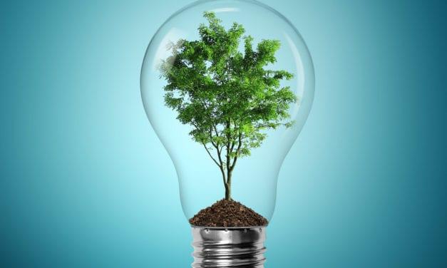 Atlantis SEZ to transform Western Cape into green technology hub