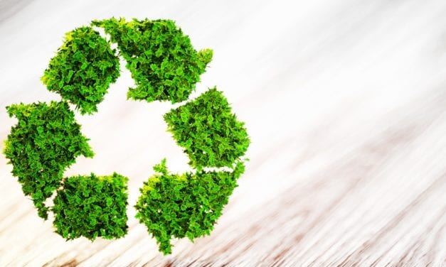 Circular economy is saving the planet and boosting profits