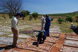 Blackthorn Resources makes headway at Kitumba