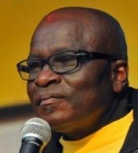 SA has a need for national mining champion