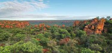Precious discovery in northern Waterberg