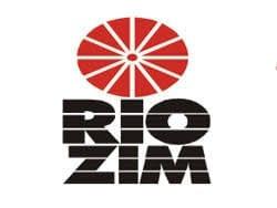 Zimbabwe ownership law stymies RioZim's bold expansion plan