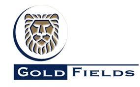 Gold Fields suffering under poor management – Minister Mantashe