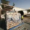 Etihad cargo image