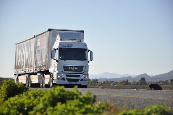 MAN truck image