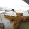 A350 human formation